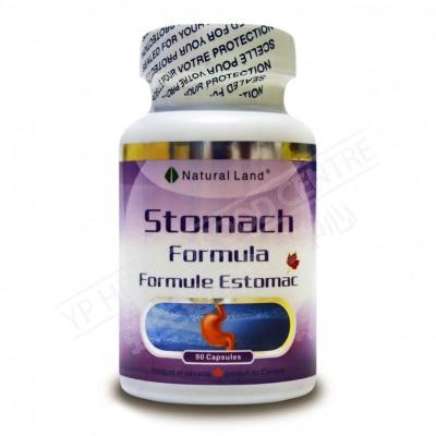 Stomach Formula