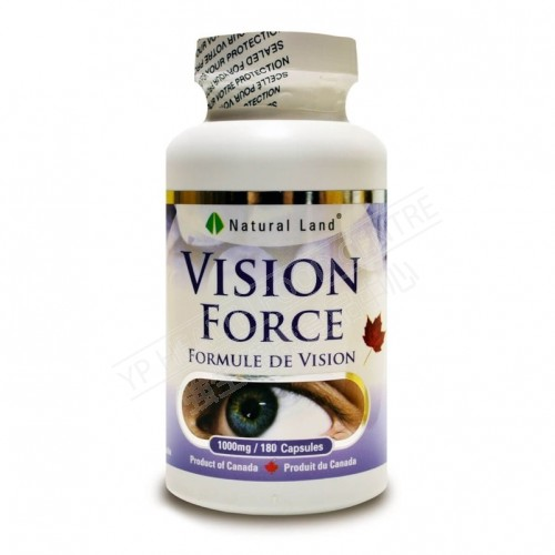 Force Vision