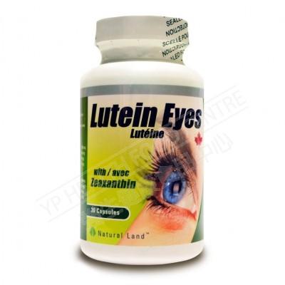 黃體素護眼