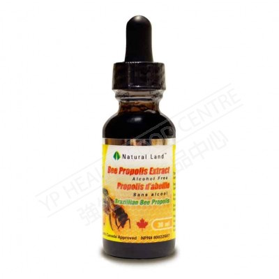 巴西蜂胶滴剂 (无酒精)Bee Propolis Tincture withour alchohol 500mg