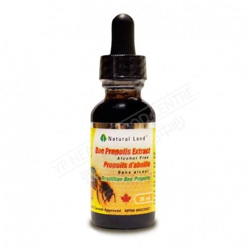 巴西蜂胶滴剂 (无酒精)Bee Propolis Tincture withour alchohol 500mg