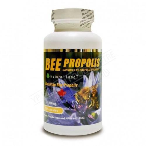 巴西蜂胶 Bee Propolis